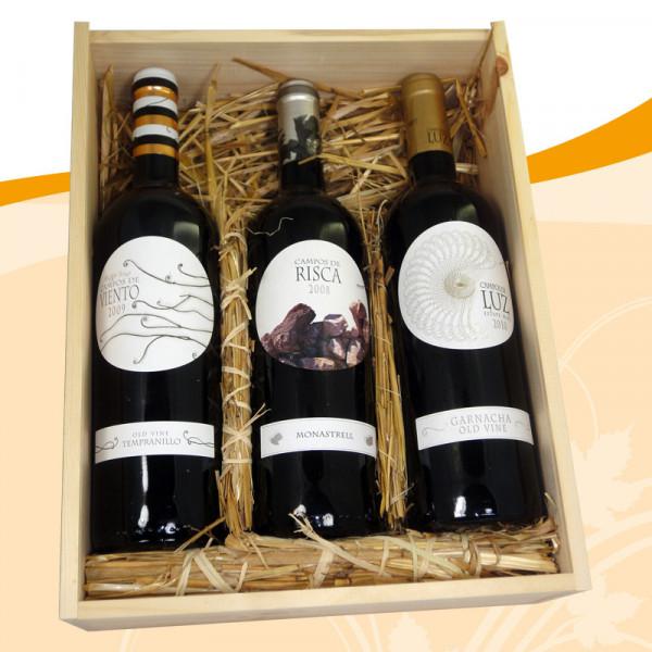 Weinpräsent Campos de Espana